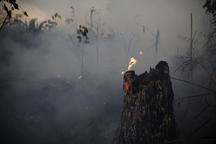 "A tree stump glows with fire amid smoke along the road to Jacunda National Forest, near the city of Porto Velho in the Vila Nova Samuel region which is part of Brazil's Amazon, Monday, Aug. 26, 2019. The Group of Seven nations on Monday pledged tens of millions of dollars to help Amazon countries fight raging wildfires, even as Brazilian President Jair Bolsonaro accused rich countries of treating the region like a ""colony."" (AP Photo/Eraldo Peres)"