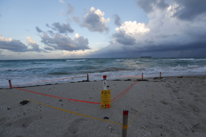A sea turtle nest is cordoned off on the edge of the beach as bands of rain come in on South Beach, Friday, Aug. 30, 2019, on Miami Beach, Fla. All of Florida is under a state of emergency and authorities are urging residents to stockpile a week's worth of food and supplies as Hurricane Dorian gathers strength and aims to slam the state as soon as Monday as a Category 4 storm. (AP Photo/Wilfredo Lee)