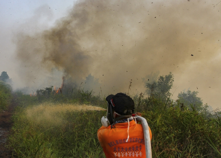Firefighters spray water to extinguish brush fires in Kampar, Riau province, Indonesia, Wednesday, Sept. 11, 2019. Authorities shut most schools in parts of Indonesia's Sumatra island to protect children from a thick, noxious haze as deliberately set fires burned through peatland forests, officials said Wednesday. (AP Photo)