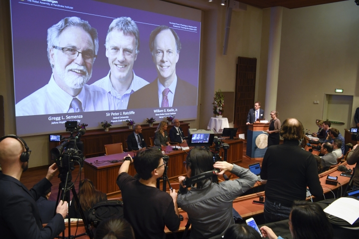 "Thomas Perlmann, far right, Secretary-General of the Nobel Committee announces the 2019 Nobel laureates in Physiology or Medicine during a news conference in Stockholm, Sweden, Monday Oct. 7, 2019. The prize has been awarded to scientists, from left on the screen, Gregg L. Semenza, Peter J. Ratcliffe and William G. Kaelin Jr. receiving the award jointly for their discoveries of ""how cells sense and adapt to oxygen availability"". (Pontus Lundahl/TT via AP)"