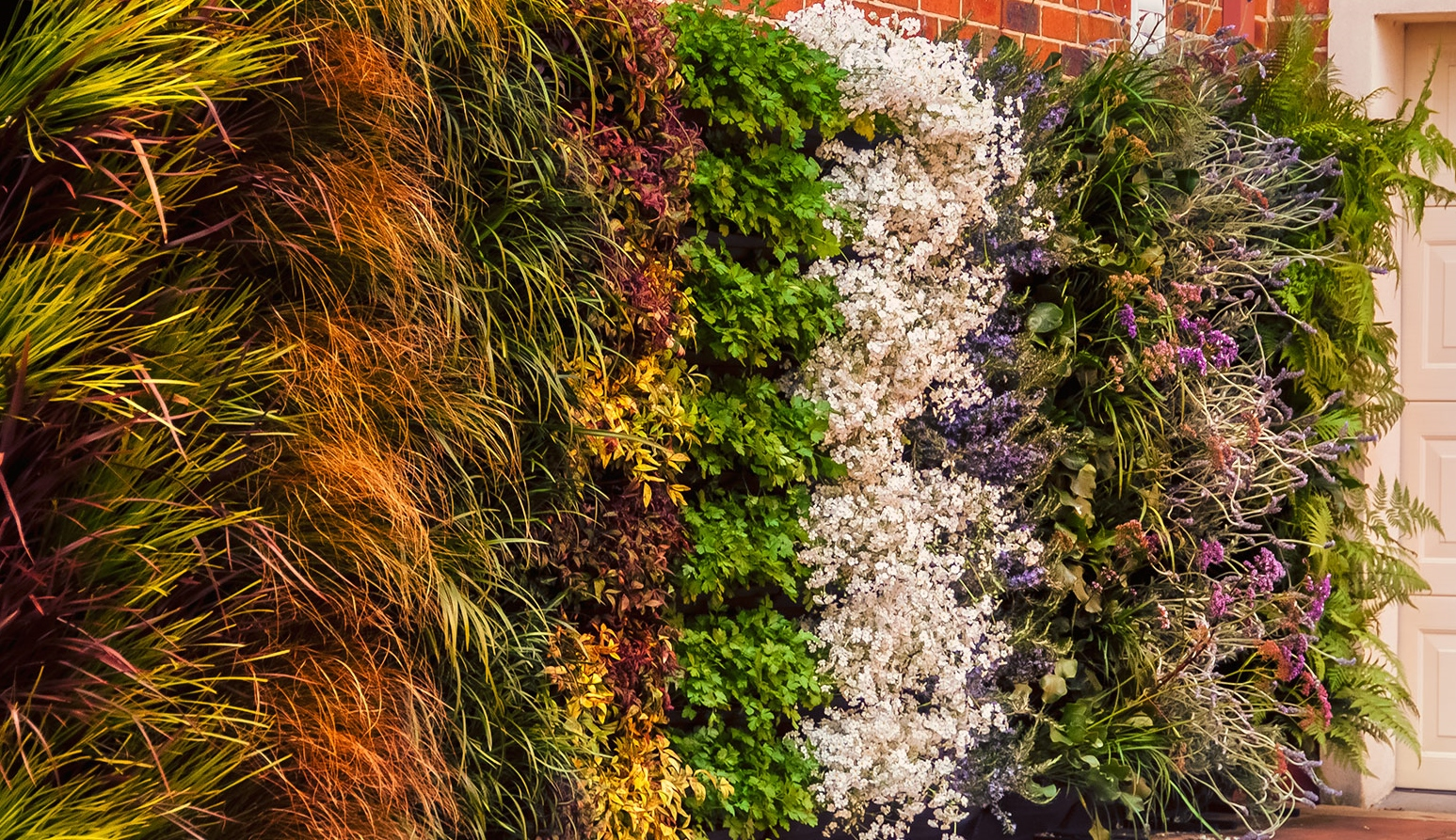 How to build a vertical garden living wall green wall
