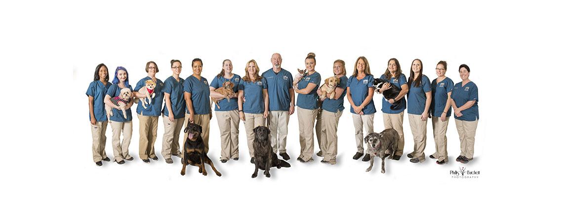 Vetcove: Veterinary Supply Starts Here