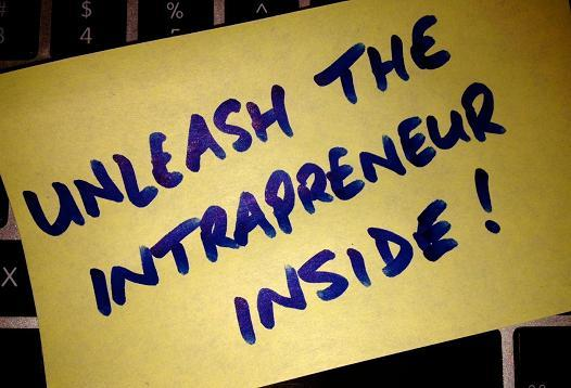 Intrapreneur-in-company