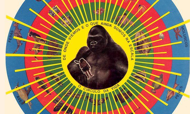 pedro-santos-brazil-krishnanda-vinyl-reissue