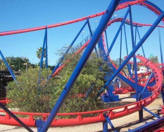 Scorpion - Busch Gardens