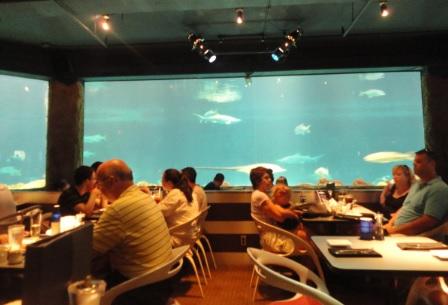 ¿Qué restaurantes encuentro en Sea World?