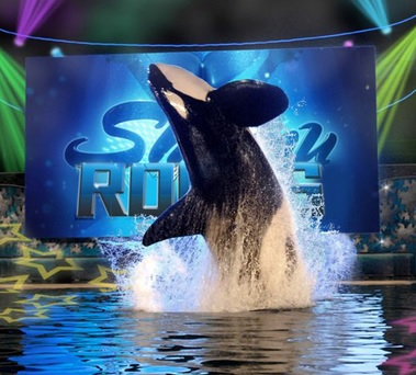 ¿Qué Shows de Temporada existen en Sea World?