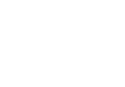 Vibrant Church