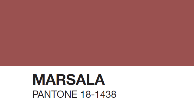 Pantone Color Swatch Swatches And a Color