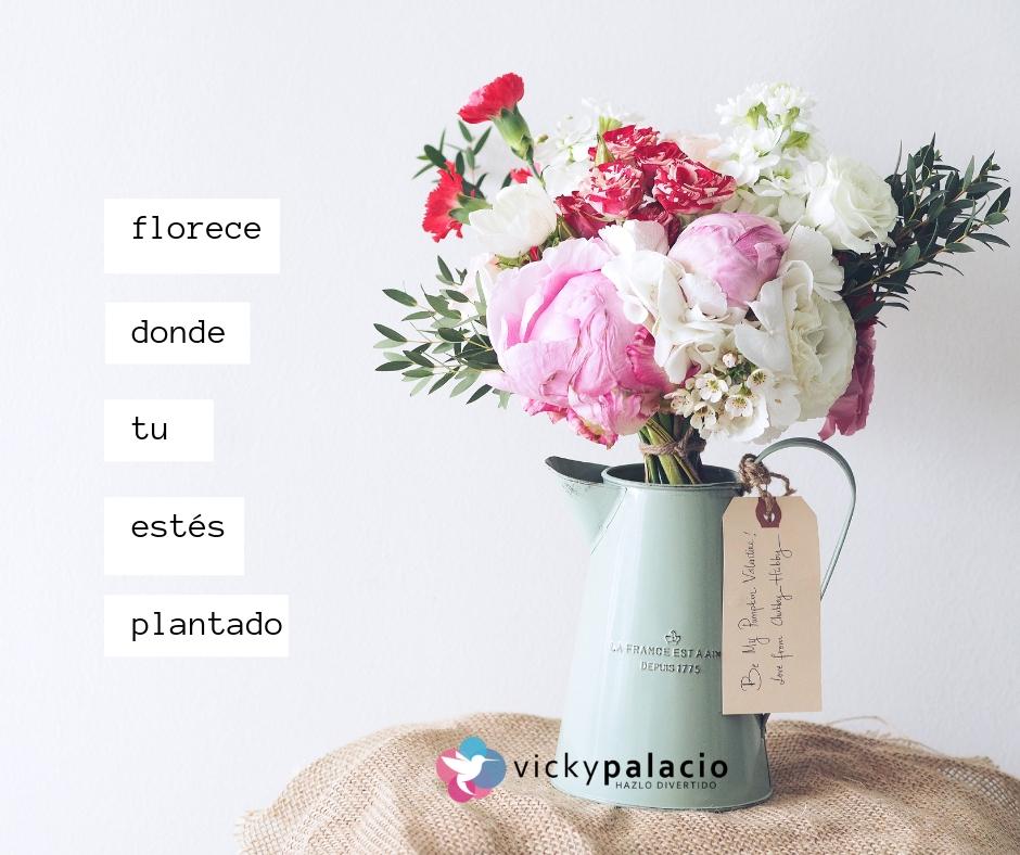 Florece donde estés