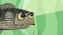 Icon for: Guppy Guppy Evolution: An interactive storybook app