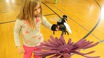 The BioSim Project: BeeSim