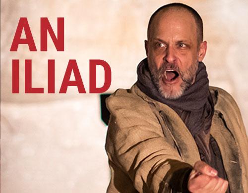 An Iliad (Regular ticket - 2+ viewers)