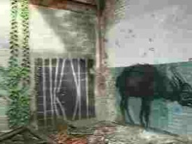 Roa lost places