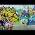MOS Walls 2010