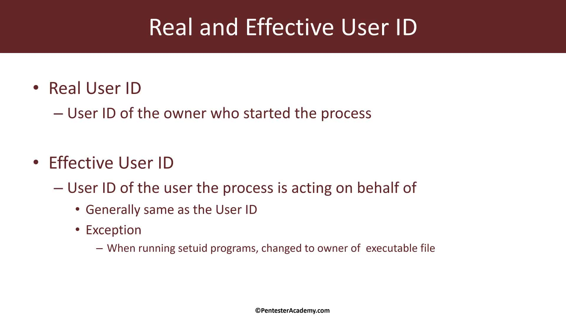 Kernel Module: Process Information: Real and Effective Userid