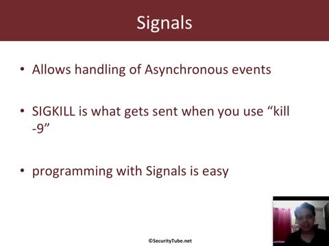 Module 2: Signals and IPC