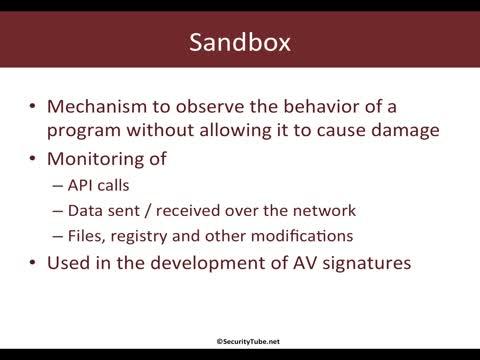 Module 6: Malware Analysis with Sandbox