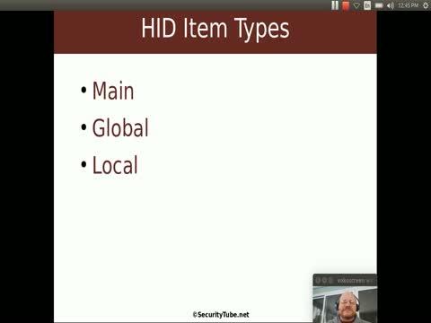 HID Descriptors and Reports