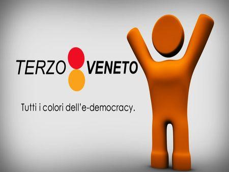 Tutti i colori dell'e-democracy.