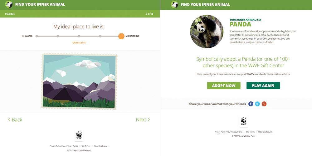 Illustrating for Online: Find Your Inner Animal