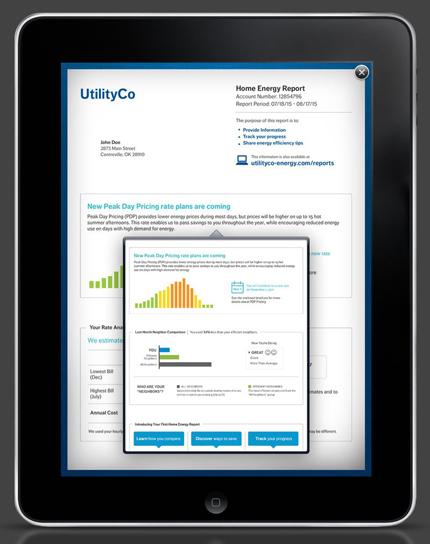 Opower's iPad - Report (portrait)