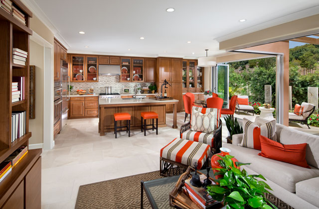 Terrazza_P1_640x420_Kitchen-large.jpg