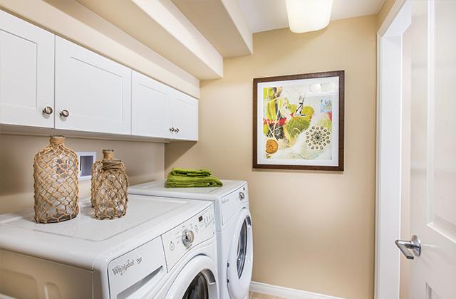 PL1-Laundry-Marigold_640x420.jpg