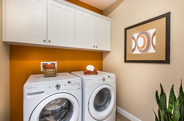 15_PL2-Laundry-Marigold_640x420.jpg