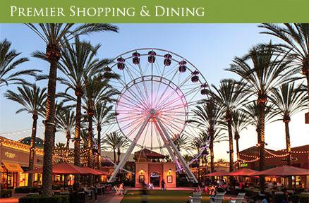 EW_nbhdcarousel__Shopping_438x288.jpg