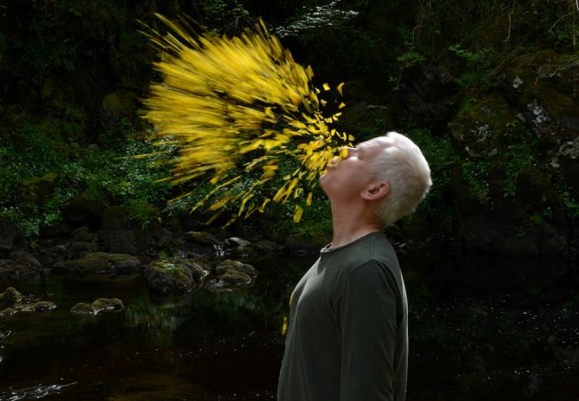 LEANING INTO THE WIND, Portrait of Artist Andy Goldsworthy Sets Release Date | Trailer