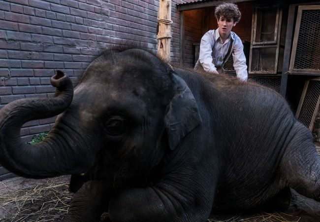 Colin McIvor's Unforgettable True Story ZOO Sets Release Date [Trailer]