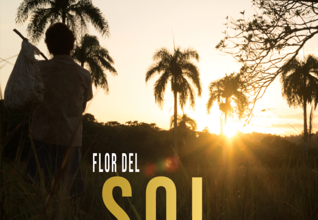 7th Dominican Film Festival NY Awards: FLOR DEL SOL by Dilia Pacheco Wins Best Film