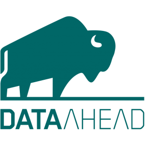 data-ahead logo