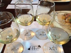 Gh petit manseng flight