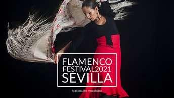 Flamenco Festival Sevilla