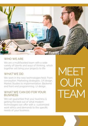 Meet the Team Flyer