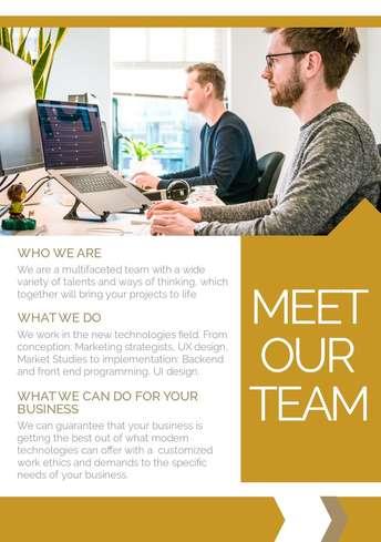 Meet the Team Flyer