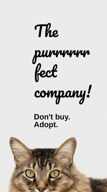 Puuurfect Company