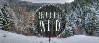 Facebook_Cover_Wild