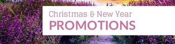 fb_christmas_03