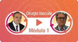 Vídeo-thumbnails-módulo-1-vascular