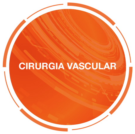Visão Aché2021-botões-vascular