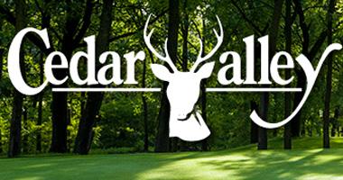 Image result for cedar valley golf
