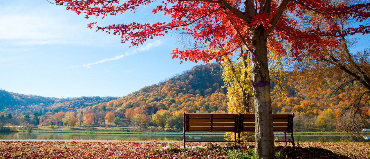 Fall colors cover the bluffs of Winona and a bench by the lake offers the perfect spot to take it in.