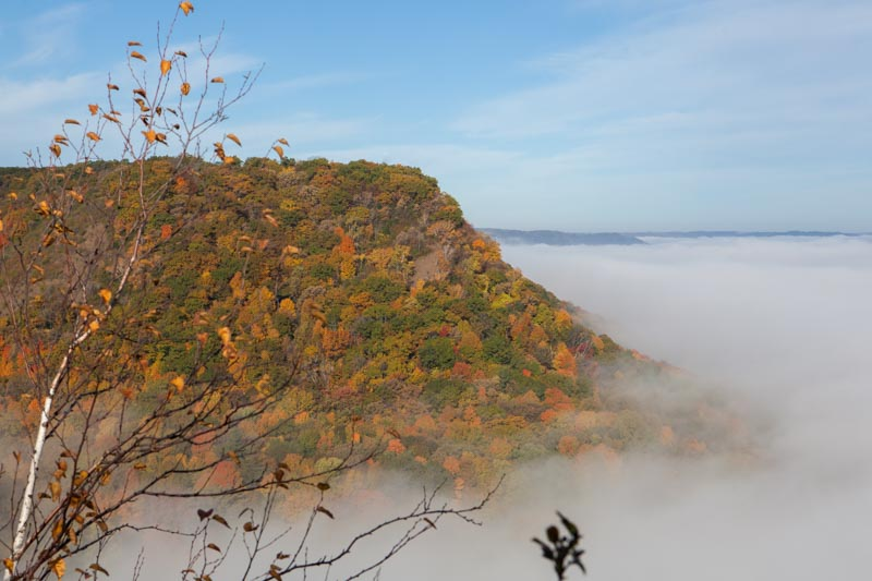Winona bluffs with fall colors rise above clouds