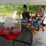 Live-Music-Elmaro-Vineyard-Wisconsin-Wine-Music