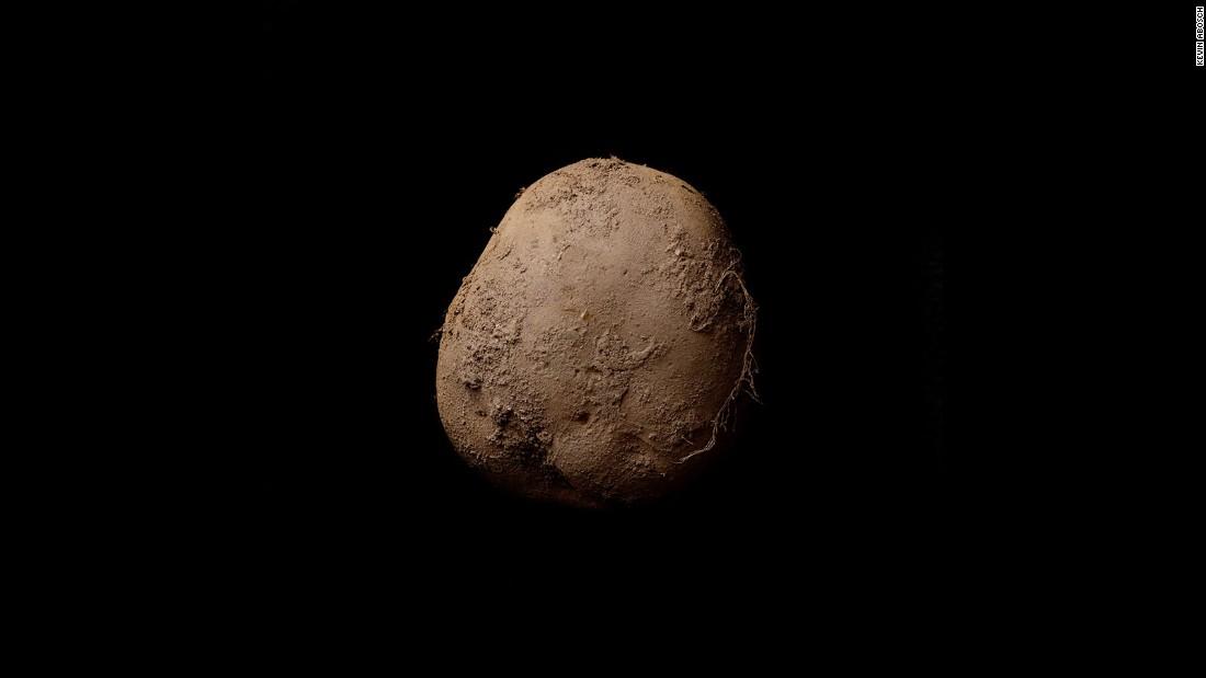 160127131550-kevin-abosch-potato-super-169