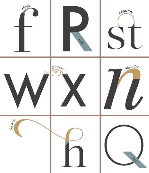Taxonomy of Typography 3