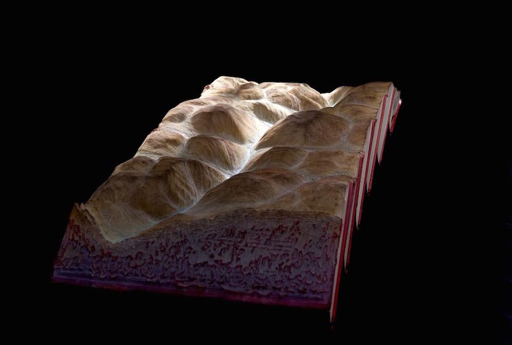 Guy Laramée carved book 10